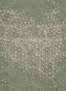 PD-401-6 Zodiac (Nature)