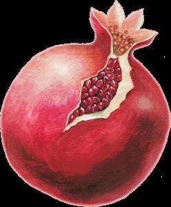 PD-139/1 Pomegranate (Nature)