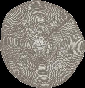 PD-169-1 Tule (Nature)