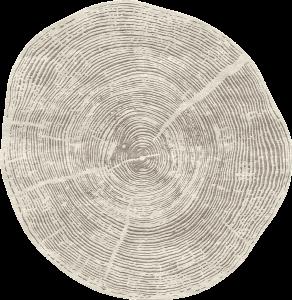 PD-169-2 Tule (Nature)