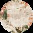PD-238-5 Mint (Association)