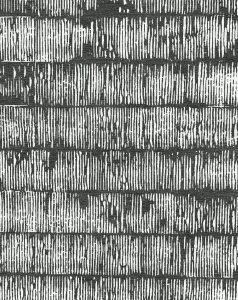 PD-219-1 Kanuti Mono (Association)
